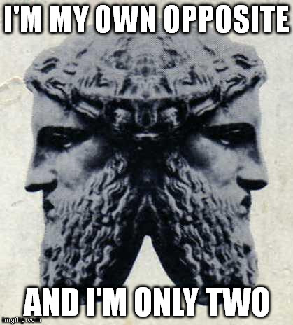 IANVS | I'M MY OWN OPPOSITE AND I'M ONLY TWO | image tagged in ianvs | made w/ Imgflip meme maker