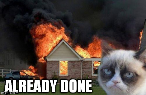 Burn Kitty | ALREADY DONE | image tagged in burn kitty | made w/ Imgflip meme maker