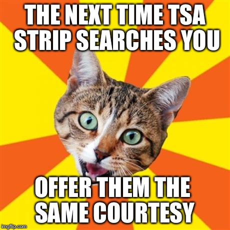 Bad Advice Cat Meme | THE NEXT TIME TSA STRIP SEARCHES YOU OFFER THEM THE SAME COURTESY | image tagged in memes,bad advice cat | made w/ Imgflip meme maker