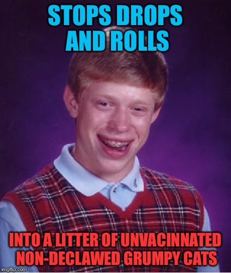 Bad Luck Brian Meme | STOPS DROPS AND ROLLS INTO A LITTER OF UNVACINNATED NON-DECLAWED GRUMPY CATS | image tagged in memes,bad luck brian | made w/ Imgflip meme maker
