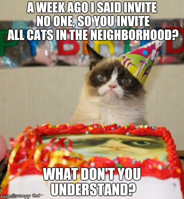 Grumpy Cat Birthday Meme | A WEEK AGO I SAID INVITE NO ONE, SO YOU INVITE ALL CATS IN THE NEIGHBORHOOD? WHAT DON'T YOU UNDERSTAND? | image tagged in memes,grumpy cat birthday | made w/ Imgflip meme maker