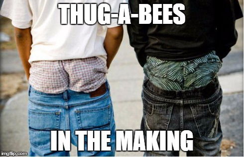 SaggyThugPants | THUG-A-BEES IN THE MAKING | image tagged in saggythugpants | made w/ Imgflip meme maker