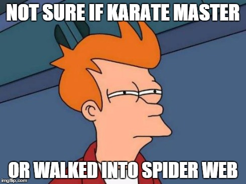Futurama Fry Meme | NOT SURE IF KARATE MASTER OR WALKED INTO SPIDER WEB | image tagged in memes,futurama fry | made w/ Imgflip meme maker