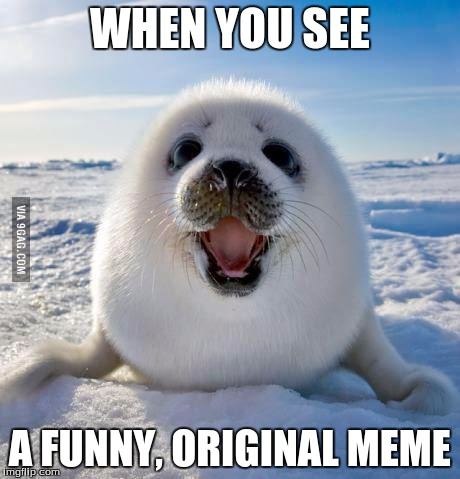 So much win | WHEN YOU SEE A FUNNY, ORIGINAL MEME | image tagged in seal of approval,memes,funny memes,original meme | made w/ Imgflip meme maker