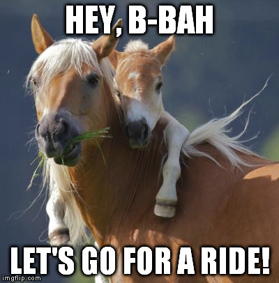Foal Of Mine | HEY, B-BAH LET'S GO FOR A RIDE! | image tagged in memes,foal of mine | made w/ Imgflip meme maker
