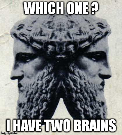 IANVS | WHICH ONE ? I HAVE TWO BRAINS | image tagged in ianvs | made w/ Imgflip meme maker