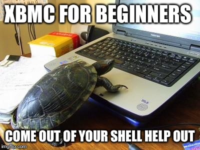 how to come out of your shell