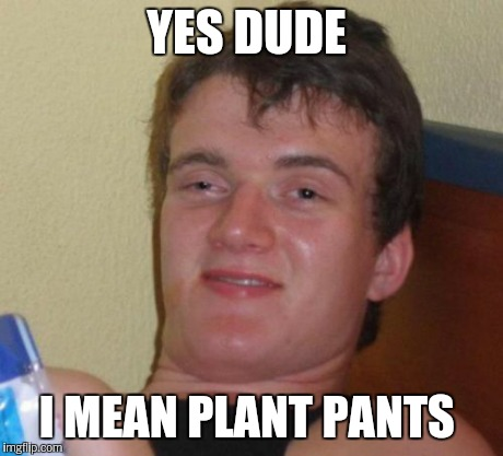 10 Guy Meme | YES DUDE I MEAN PLANT PANTS | image tagged in memes,10 guy | made w/ Imgflip meme maker