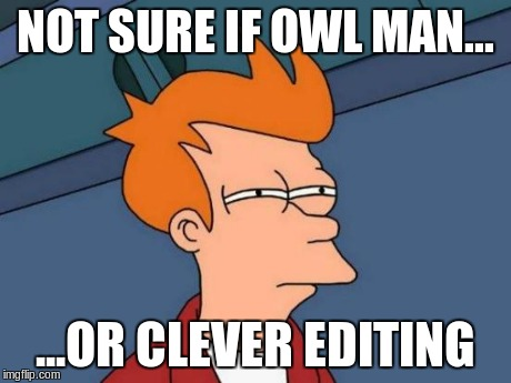 wtf did i just see? | NOT SURE IF OWL MAN... ...OR CLEVER EDITING | image tagged in memes,futurama fry,owl,editing,wtf | made w/ Imgflip meme maker
