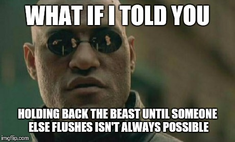 Matrix Morpheus Meme | WHAT IF I TOLD YOU HOLDING BACK THE BEAST UNTIL SOMEONE ELSE FLUSHES ISN'T ALWAYS POSSIBLE | image tagged in memes,matrix morpheus | made w/ Imgflip meme maker