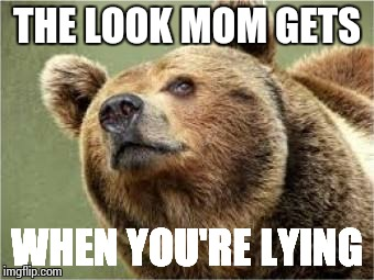Smug Bear | THE LOOK MOM GETS WHEN YOU'RE LYING | image tagged in memes,smug bear | made w/ Imgflip meme maker