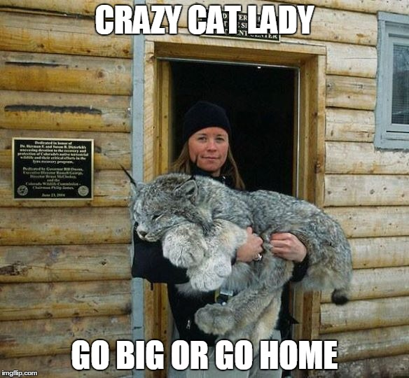 CRAZY CAT LADY GO BIG OR GO HOME | image tagged in cat lady,big cat | made w/ Imgflip meme maker