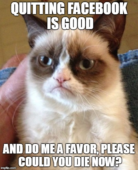 Grumpy Cat Meme | QUITTING FACEBOOK IS GOOD AND DO ME A FAVOR, PLEASE COULD YOU DIE NOW? | image tagged in memes,grumpy cat | made w/ Imgflip meme maker