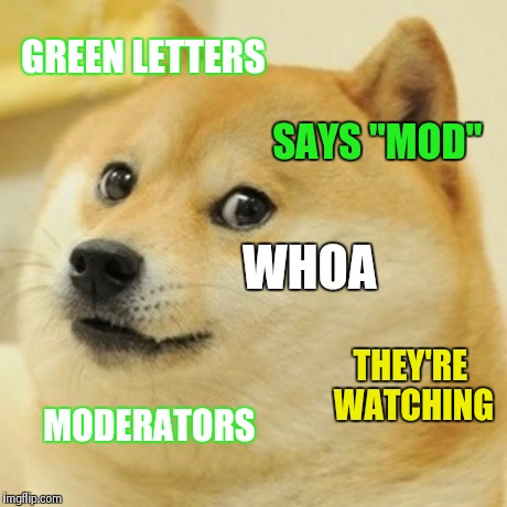 "Doge Meme | GREEN LETTERS SAYS ""MOD"" WHOA MODERATORS THEY'RE WATCHING 