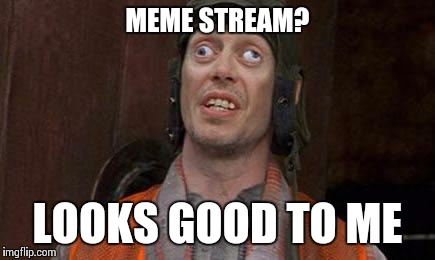 Check out my meme stream! | MEME STREAM? LOOKS GOOD TO ME | image tagged in looks good to me,imgflip,meme stream | made w/ Imgflip meme maker
