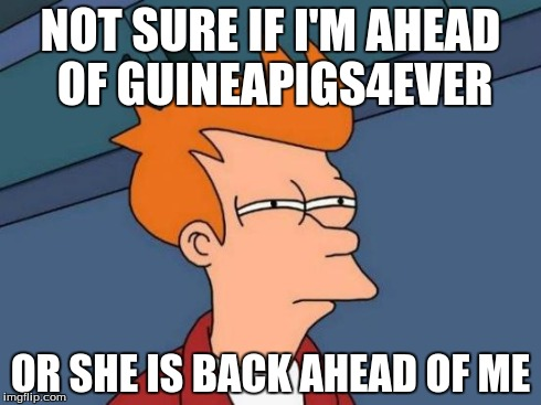 We have a friendly competition going on | NOT SURE IF I'M AHEAD OF GUINEAPIGS4EVER OR SHE IS BACK AHEAD OF ME | image tagged in memes,futurama fry | made w/ Imgflip meme maker