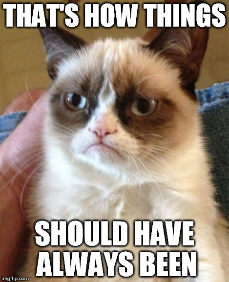 THAT'S HOW THINGS SHOULD HAVE ALWAYS BEEN | image tagged in memes,grumpy cat | made w/ Imgflip meme maker