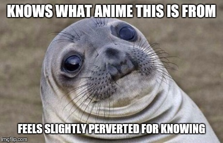 KNOWS WHAT ANIME THIS IS FROM FEELS SLIGHTLY PERVERTED FOR KNOWING | image tagged in memes,awkward moment sealion | made w/ Imgflip meme maker