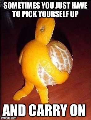 SOMETIMES YOU JUST HAVE TO PICK YOURSELF UP AND CARRY ON | image tagged in orange | made w/ Imgflip meme maker
