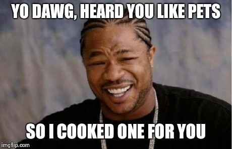 Yo Dawg Heard You Meme | YO DAWG, HEARD YOU LIKE PETS SO I COOKED ONE FOR YOU | image tagged in memes,yo dawg heard you | made w/ Imgflip meme maker