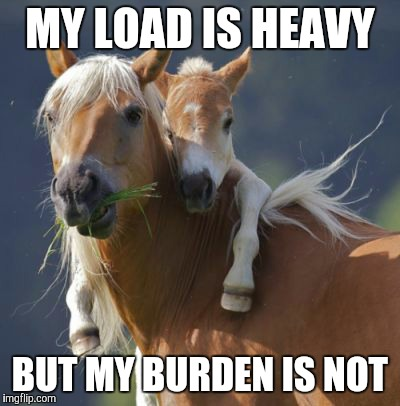 Foal Of Mine | MY LOAD IS HEAVY BUT MY BURDEN IS NOT | image tagged in memes,foal of mine | made w/ Imgflip meme maker