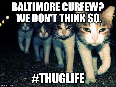 Wrong Neighboorhood Cats Meme | BALTIMORE CURFEW? WE DON'T THINK SO. #THUGLIFE | image tagged in memes,wrong neighboorhood cats | made w/ Imgflip meme maker