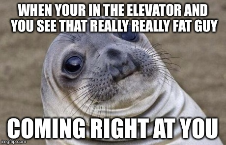 Awkward Moment Sealion | WHEN YOUR IN THE ELEVATOR AND YOU SEE THAT REALLY REALLY FAT GUY COMING RIGHT AT YOU | image tagged in memes,awkward moment sealion | made w/ Imgflip meme maker