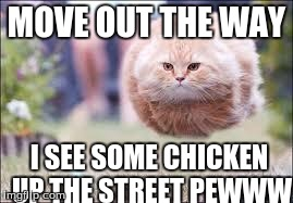 flying cat ball | MOVE OUT THE WAY I SEE SOME CHICKEN UP THE STREET PEWWW | image tagged in flying cat ball | made w/ Imgflip meme maker