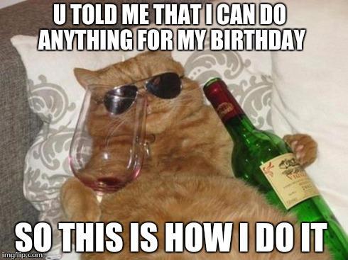 Funny It S My Birthday Meme : Funny cat birthday imgflip