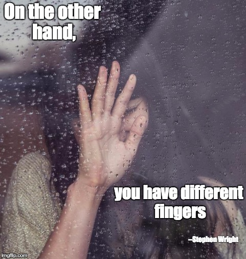 On the other hand, you have different fingers --Stephen Wright | image tagged in handonwindow | made w/ Imgflip meme maker