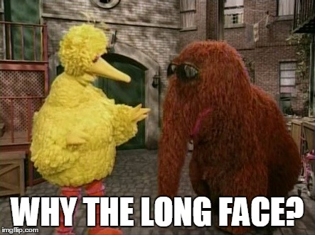 Big Bird And Snuffy Meme | WHY THE LONG FACE? | image tagged in memes,big bird and snuffy | made w/ Imgflip meme maker