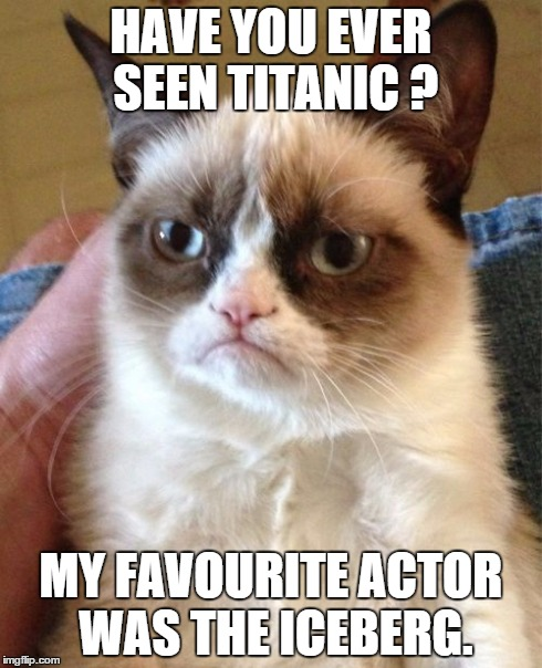 No one remembers this actor, despite having the most important role in the movie. | HAVE YOU EVER SEEN TITANIC ? MY FAVOURITE ACTOR WAS THE ICEBERG. | image tagged in memes,grumpy cat,titanic,actor,question | made w/ Imgflip meme maker