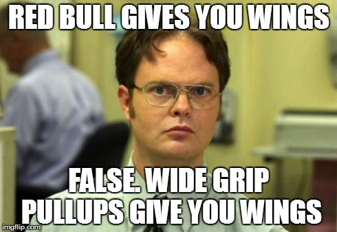 Dwight Schrute | RED BULL GIVES YOU WINGS FALSE. WIDE GRIP PULLUPS GIVE YOU WINGS | image tagged in memes,dwight schrute,redbull,false,wings,pullups | made w/ Imgflip meme maker