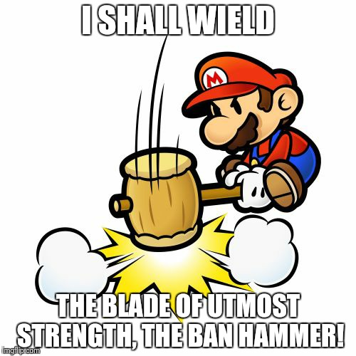 Mario Hammer Smash Meme | I SHALL WIELD THE BLADE OF UTMOST STRENGTH, THE BAN HAMMER! | image tagged in memes,mario hammer smash | made w/ Imgflip meme maker