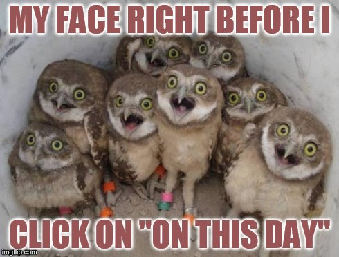 "Excited Owls | MY FACE RIGHT BEFORE I CLICK ON ""ON THIS DAY"" 