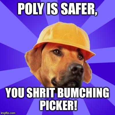 POLY IS SAFER, YOU SHRIT BUMCHING PICKER! | image tagged in safety hound | made w/ Imgflip meme maker