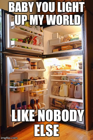 BABY YOU LIGHT UP MY WORLD LIKE NOBODY ELSE | image tagged in lol,refrigerator | made w/ Imgflip meme maker