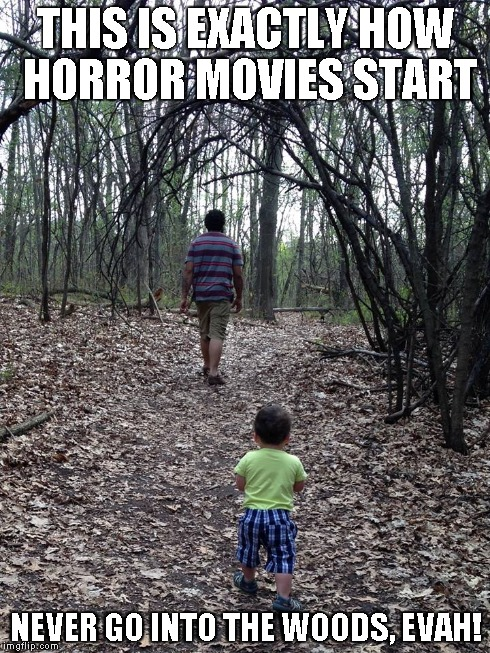 How Horror Starts | THIS IS EXACTLY HOW HORROR MOVIES START NEVER GO INTO THE WOODS, EVAH! | image tagged in horror,woods,starts | made w/ Imgflip meme maker