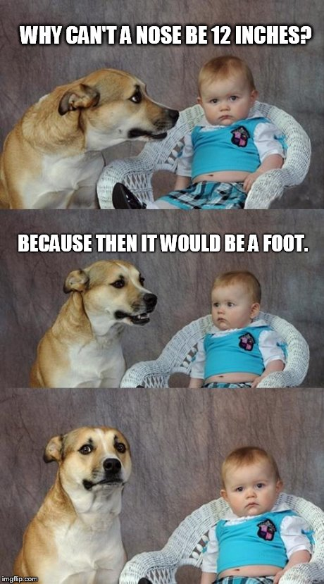 Dad Joke Dog Meme | WHY CAN'T A NOSE BE 12 INCHES? BECAUSE THEN IT WOULD BE A FOOT. | image tagged in memes,dad joke dog | made w/ Imgflip meme maker