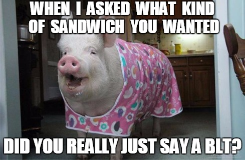 Male Chauvinist Pig role reversal | WHEN  I  ASKED  WHAT  KIND OF  SANDWICH  YOU  WANTED DID YOU REALLY JUST SAY A BLT? | image tagged in piggy,funny | made w/ Imgflip meme maker