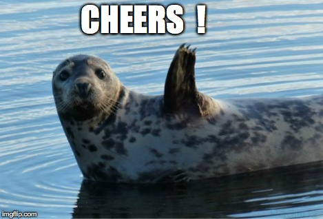 Seal | CHEERS  ! | image tagged in seal | made w/ Imgflip meme maker