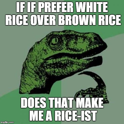 Philosoraptor Meme | IF IF PREFER WHITE RICE OVER BROWN RICE DOES THAT MAKE ME A RICE-IST | image tagged in memes,philosoraptor | made w/ Imgflip meme maker
