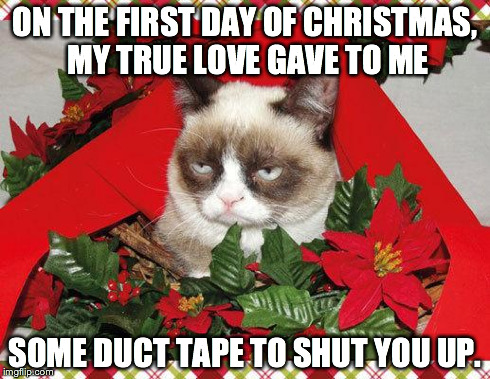 Grumpy Cat Mistletoe | ON THE FIRST DAY OF CHRISTMAS, MY TRUE LOVE GAVE TO ME SOME DUCT TAPE TO SHUT YOU UP. | image tagged in memes,grumpy cat mistletoe,grumpy cat | made w/ Imgflip meme maker
