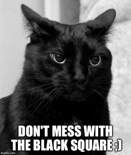 pissed cat | DON'T MESS WITH THE BLACK SQUARE ;) | image tagged in pissed cat | made w/ Imgflip meme maker