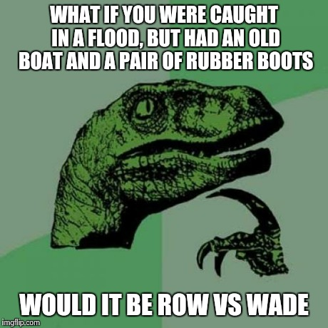 Philosoraptor Meme | WHAT IF YOU WERE CAUGHT IN A FLOOD, BUT HAD AN OLD BOAT AND A PAIR OF RUBBER BOOTS WOULD IT BE ROW VS WADE | image tagged in memes,philosoraptor | made w/ Imgflip meme maker