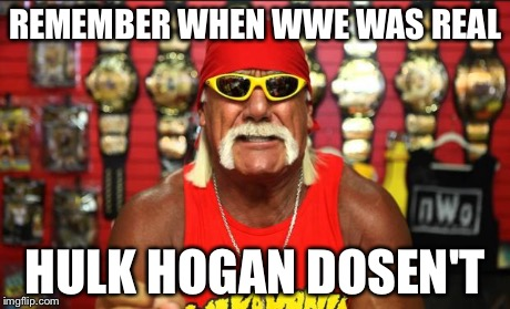 Hulk Hogan Memes Imgflip
