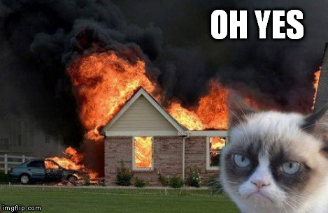 Burn Kitty | OH YES | image tagged in burn kitty | made w/ Imgflip meme maker
