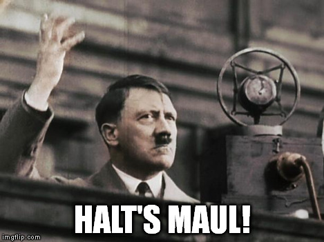 Hitler - fed up | HALT'S MAUL! | image tagged in hitler - fed up | made w/ Imgflip meme maker