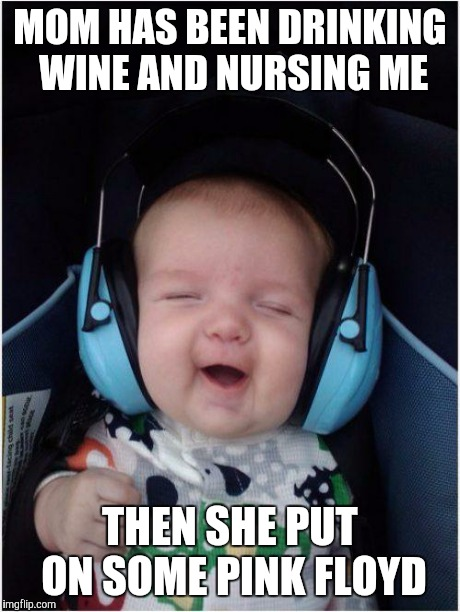 Jammin Baby | MOM HAS BEEN DRINKING WINE AND NURSING ME THEN SHE PUT ON SOME PINK FLOYD | image tagged in memes,jammin baby | made w/ Imgflip meme maker
