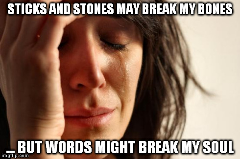 First World Problems | STICKS AND STONES MAY BREAK MY BONES ... BUT WORDS MIGHT BREAK MY SOUL | image tagged in memes,first world problems | made w/ Imgflip meme maker